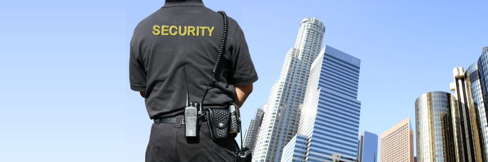 Security 1000 x 333 px